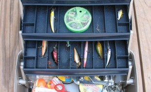 Essential Equipment and Gear for Sport Fishing Newbies